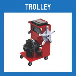 Paguro - Tolley